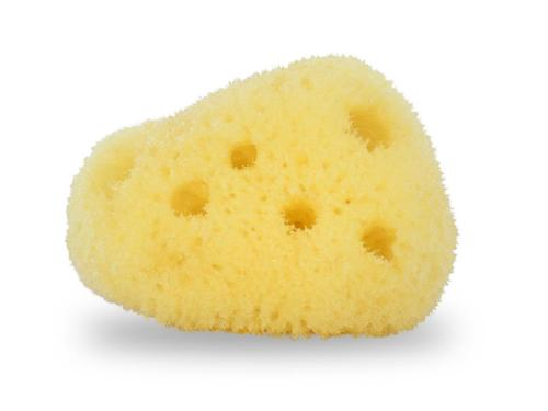 Contented Infant's Natural Sea Sponge for Baby & Toddler small